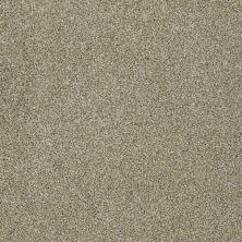 Anderson Tuftex Fido Inca Gold 00115_944DF