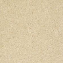 Anderson Tuftex Fido Gold Sunset 00200_944DF