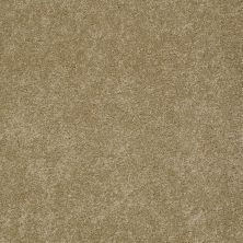 Anderson Tuftex Fido Maple Glaze 00202_944DF