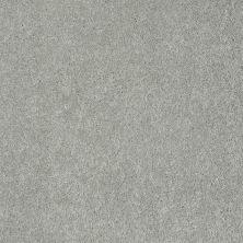 Anderson Tuftex Fido English Stone 00501_944DF