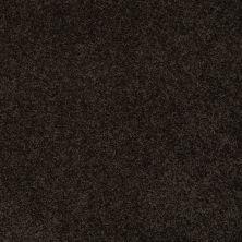 Anderson Tuftex Fido Bristol 00704_944DF
