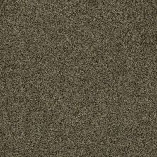 Anderson Tuftex Fido Glorious 00712_944DF