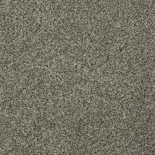 Anderson Tuftex Fido Before Dark 00716_944DF