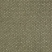 Anderson Tuftex Nala Bison 00321_947DF