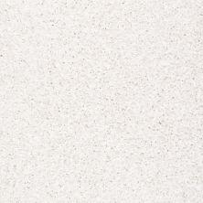 Anderson Tuftex SFA Glitzy Gem Glam 00101_949SF