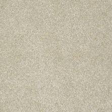 Anderson Tuftex Bear Seed Pearl 00114_950DF