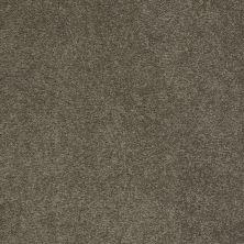 Anderson Tuftex Bear Bulldog 00702_950DF