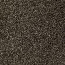 Anderson Tuftex Bear Mysterious 00715_950DF