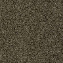 Anderson Tuftex Chipper Resonant 00712_956DF