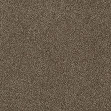 Anderson Tuftex Chipper Cocoa Bean 00714_956DF