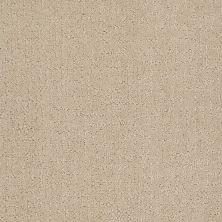 Anderson Tuftex Creative Elegance (floors To Go) Heartfelt Dream Champagne 00110_958AF