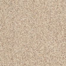Anderson Tuftex Anso Premier Dealer Agassi Cottonwood 00171_968PD