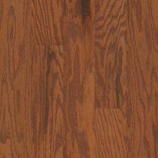 Shaw Floors Ashton Woods Homes Timeless 5″ Gunstock 00780_A021S