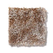 Shaw Floors Value 300 Fleece 00111_A3300