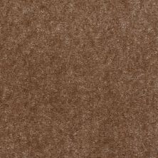 Shaw Floors Blazer II Dusty Trail 88715_A3988