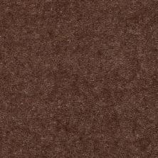 Shaw Floors Blazer II Sparrow 88716_A3988