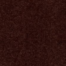 Shaw Floors Blazer II Chocolate Chip 88717_A3988