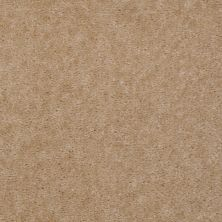 Shaw Floors Renegade Cork Tint 01132_A4101