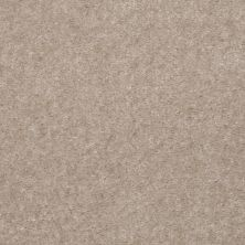 Shaw Floors Renegade Angelico 01134_A4101