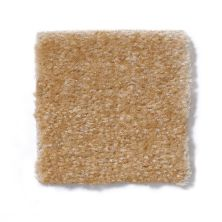 Shaw Floors Renegade Sisal 01161_A4101