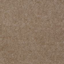 Shaw Floors Renegade Desert Buff 01170_A4101