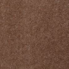 Shaw Floors Renegade Leather Brown 01731_A4101