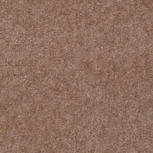 Shaw Floors Renegade Acorn 01741_A4101
