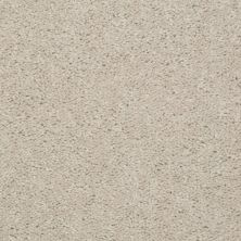 Shaw Floors Dashing II 15′ Marble 58150_A4447