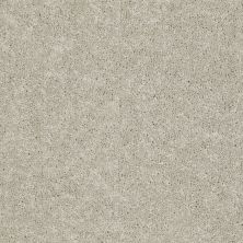 Shaw Floors Dashing II 15′ Dove 58700_A4447