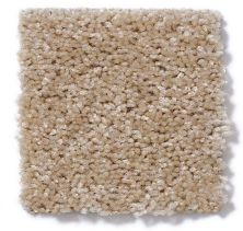 Shaw Floors Debut Toasted Coconut 00108_A4468