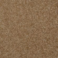 Shaw Floors Debut Braided Rug 00707_A4468