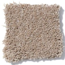 Shaw Floors Evertouch Jubilee Stone Dust 00102_A4502