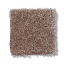 Shaw Floors Renegade II Warm Mink 00703_A4597