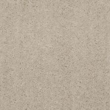 Shaw Floors Extenuate Coastal Sand 00122_A4716