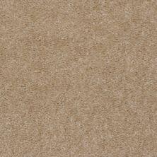 Shaw Floors Extenuate Caravan 00703_A4716