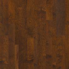 Anderson Tuftex Anderson Hardwood Casitablanca Mixed Balboa Brown 07011_AA759