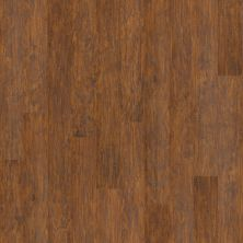 Shaw Floors Arkansas Flooring Connection Frederick Yadkin River Hickory 00852_AK600
