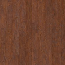 Shaw Floors Arkansas Flooring Connection Frederick Raven Rock Hickory 00863_AK600
