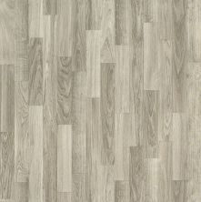 Shaw Floors Resilient Residential Tallon Crossbeam 00541_AR615