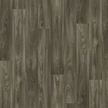 Shaw Floors Resilient Residential Hayden Iowa 00510_AR616