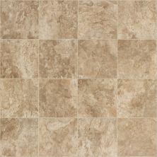 Shaw Floors Resilient Residential Carlton Bloomington 00209_AR617