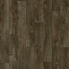 Shaw Floors Resilient Residential Carlton Indiana 00703_AR617