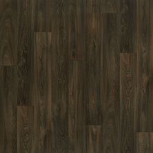 Shaw Floors Resilient Residential Carlton Dakota 00707_AR617