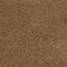 Anderson Tuftex Natural State 1 Bronze Glow 00727_ARK51
