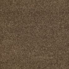 Anderson Tuftex Natural State 1 Vicuna 00736_ARK51