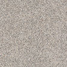 Shaw Floors Caress By Shaw Softly Surreal Classic III Cobblestone 0551A_BCC07