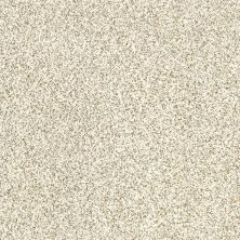Shaw Floors Caress By Shaw Delicate Distinction Classic I Cliff 0144B_BCC17