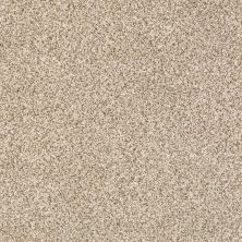 Shaw Floors Caress By Shaw Delicate Distinction Classic I Cavern 0740B_BCC17