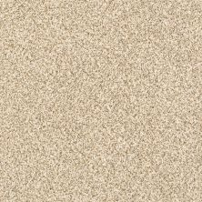 Shaw Floors Caress By Shaw Delicate Distinction Classic I Toasted Grain 0241B_BCC18