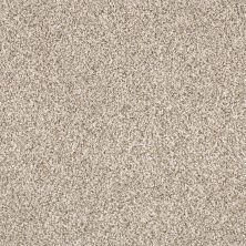 Shaw Floors Caress By Shaw Delicate Distinction Classic I Granite 0741B_BCC18